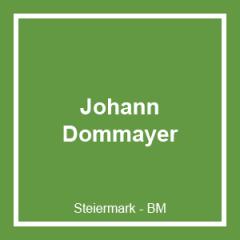 Dommayer GmbH & Co. KG