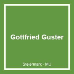 GOTTFRIED GUSTER GMBH
