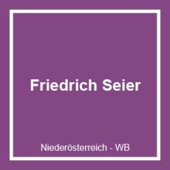 HOLZBAU Friedrich Seier GmbH