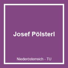 Josef Pölsterl Zimmerei und Sägewerk Ges.m.b.H