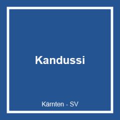 Kandussi Dachdeckungs GmbH