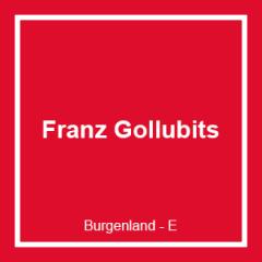FRANZ GOLLUBITS GESELLSCHAFT M.B.H. & CO KG
